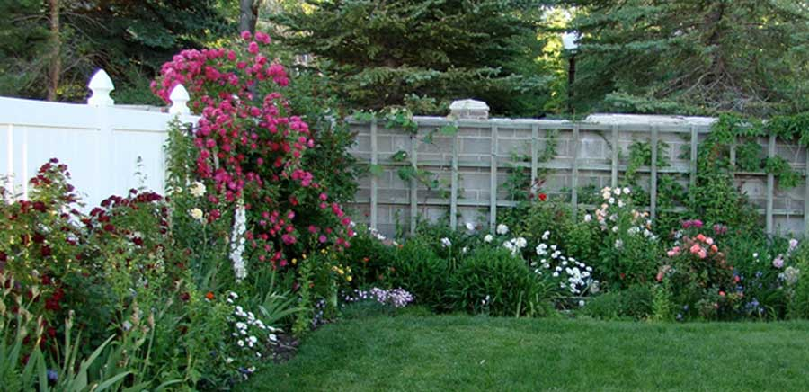 How to Keep Your Garden Nice When You are Not There