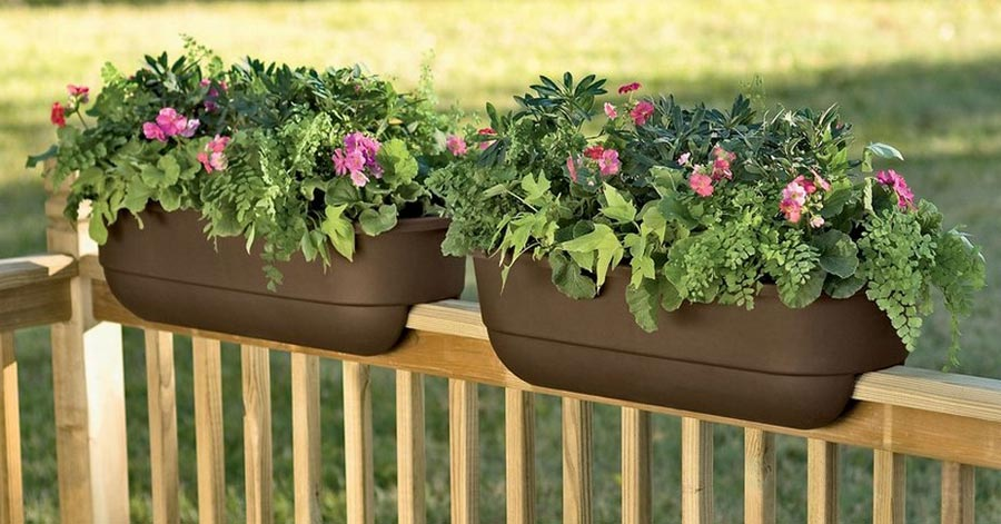 Best Garden Pots for Balconies